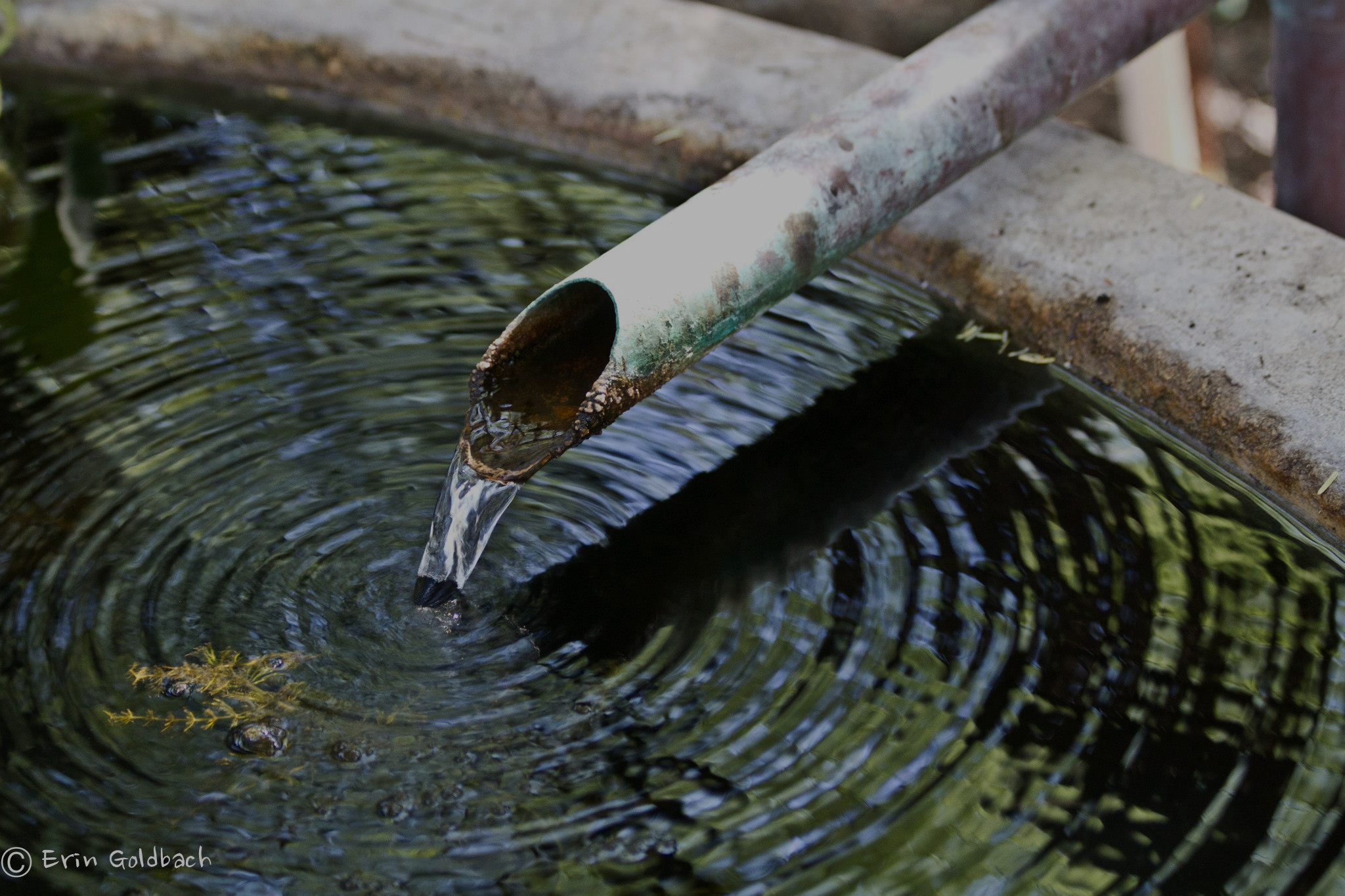 photo of water fountain